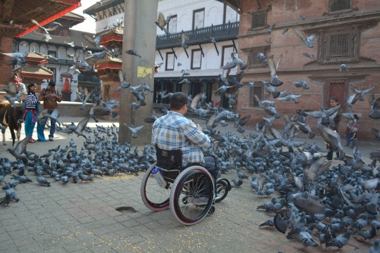 Chasing... I mean feeding pigeons
