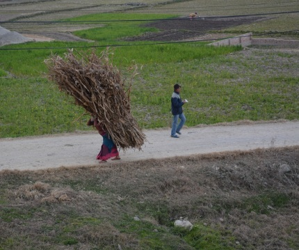 The women work extremely hard in Nepal, this would have to be the biggest but not the heaviest load we saw some one carrying.