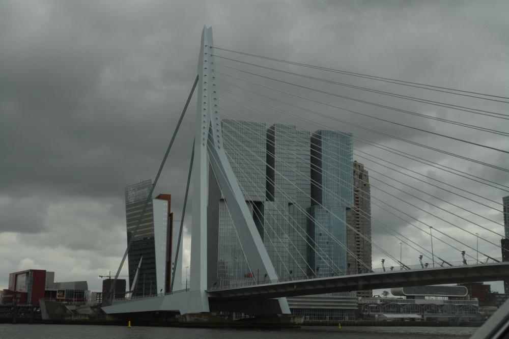 The Erasmus Bridge in Rotterdam - looks very harp-like