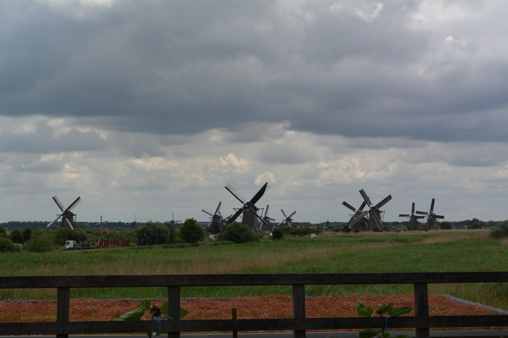 The 19 Windmills of Kinderdijk. Used to pump water since the 1700's