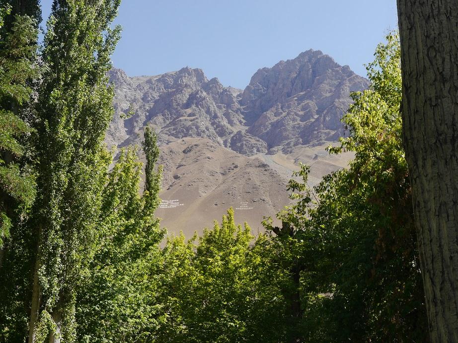 Peeking through the bushes to check on the ever-present mountains